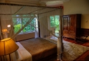 2835568-ceylon-tea-trails-hill-country-sri-lanka