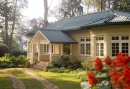 2835566-ceylon-tea-trails-hill-country-sri-lanka