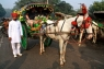 Taj-Mahal-Horse-Carriage