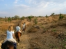 morning-ride-through-the-lower-aravallis